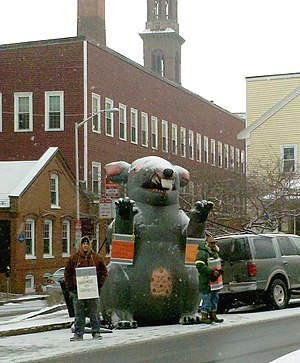 Inflatable rat - Inflatable rat in Cambridge, Massachusetts.