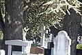Glasnevin Cemetery - (442784946).jpg