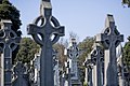 Glasnevin Cemetery - (442797853).jpg
