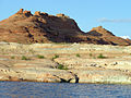 Glen Canyon National Recreation Area P1013099.jpg