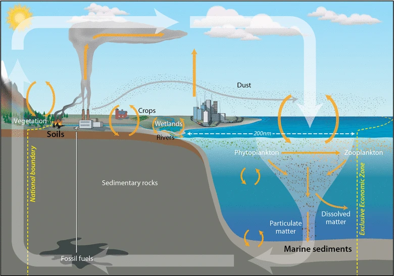 File:Global carbon cycle.webp