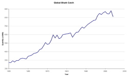 Graph showing shark catch from 1950 to 2006. Overfishing of sharks has led to the upset of entire marine ecosystems.[1]