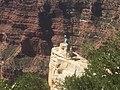 Grand Canyon National Park No. 9 IMG 0622.jpg