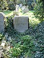 Grave of astronomer Sir Arthur Eddington - geograph.org.uk - 382504.jpg