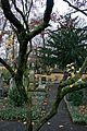 Graveyard in Bonn 3.jpg