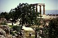 Grece Corynthe Temple Apollon - panoramio.jpg