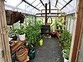 Greenhouse indoor view 20170826.jpg