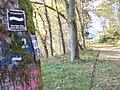Grenzweg bei Ouren - geo.hlipp.de - 6803.jpg
