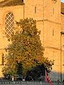 Grossmünster - Wühre 2012-09-15 19-09-31 (P7000).JPG