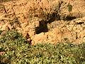 Grotte Maafa 1.JPG