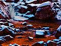 Guadalupe River (4227005856).jpg