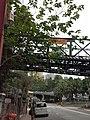 HK 中環 Central 半山區 Mid-levels 鑬車徑 Tramway Path near Kennedy Road St Joseph's red brick building school April 2020 SS2 12.jpg