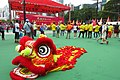 HK 銅鑼灣 CWB 維多利亞公園 Victoria Park for 01-July 舞獅子頭 Chinese Lion Dance mask event June 2018 IX13 慶祝香港回歸 Transfer of sovereignty over of Hong Kong.jpg