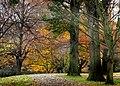 Hagley Park New Zealand. (25) (8069590848).jpg