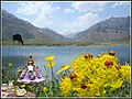 Happy Iranian New Year ('Haft Sin'-e Nowruz) سفره هفت سین عید نوروز - panoramio.jpg