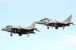 Harriers (5179810434).jpg