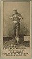 Harry Staley, Pittsburgh Alleghenys, baseball card portrait LCCN2007686945.jpg