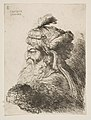 Head of an old Man with a Turban facing Left MET DP816523.jpg