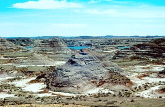 Maastrichtian - Hell Creek Formation is well exposed in the badlands in the vicinity of Ft. Peck Reservoir.