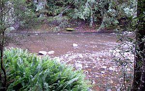 Hellyer River - Hellyer River, at Hellyer Gorge