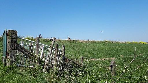 Hoge Maasdijk, Hedikhuizen (gem. Heusden)