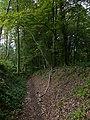 Holle weg tussen Kasteelstraat en Giveld, Teuven - panoramio.jpg