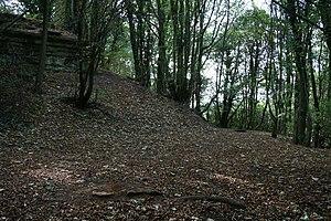 Hook Norton ironstone quarries (Brymbo)