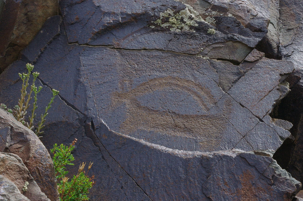 Horned antelope in a bronze age petroglyph at Tamgaly, Kazakhstan.jpg