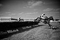 Horse Racing B&W (3911214211).jpg