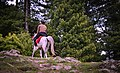 Horse rider in paye.jpg