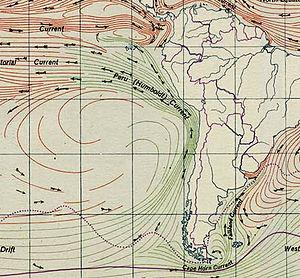 Corriente de Humboldt
