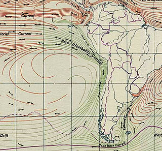 Humboldt Current A cold, low-salinity eastern boundary current that flows north along the western coast of South America from southern Chile to northern Peru