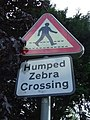 Humped Zebra - geograph.org.uk - 1450509.jpg