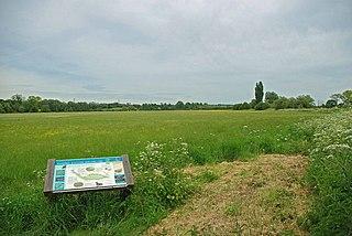 Hunsdon Mead Essex Wildlife Trust Nature reserve