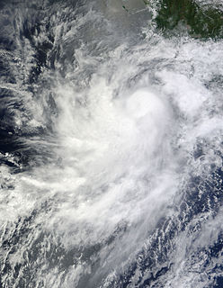 Hurricane Frank (2010) Category 1 Pacific hurricane in 2010
