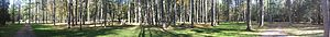 Hyner Run State Park - Panoramic view of Hyner Run State Park with swimming pool at left, picnic shelters 1 and 2 at right.
