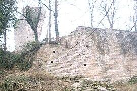 IMG Ruines du Chateau de Montaigu 2.JPG