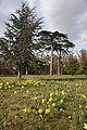 Ickworth House gardens - geograph.org.uk - 1221200.jpg