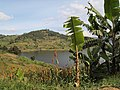 Impressions of Lake Bunyonyi by Zenith4237 (29).jpg