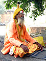 India-5897 - Flickr - archer10 (Dennis).jpg