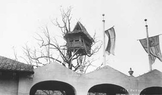 Francisco Tongio Liongson - Infamous Philippine Tribal Tree House at the 1904 Louisiana Purchase Exposition.