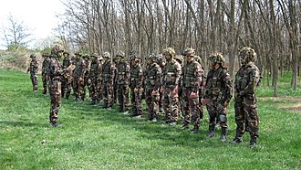 Hungarian Defence Forces - Infantrymen of Hungarian Army's 25/88th Light Mixed Battalion