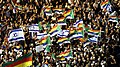 Israeli Druze rally against Nation-State Law.jpg
