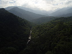 Itatiaia national park.JPG