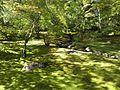 Japanese Garden (15858538040).jpg
