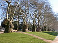 Jardim da Cordoariae (Porto).jpg