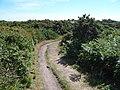 Jersey - panoramio.jpg