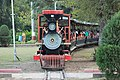Joy train.jpg