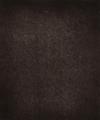 Jules Janssen, Région Central (Granulations), June 30, 1893, 7h 18m 54s, 1893, Woodburytype, 53.7 x 44.6 cm, MoMA, 360.2010.2.png
