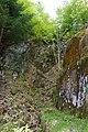 Kalksteinbrüche am Rauhberg (MGK27037).jpg